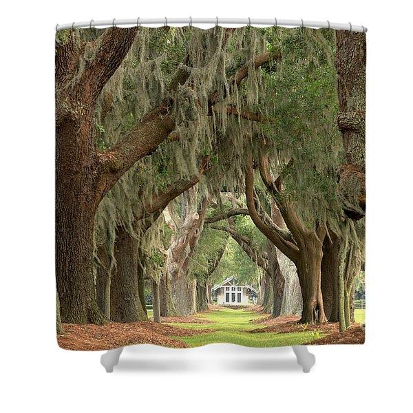 Retreat Avenue Of The Oaks Shower Curtain