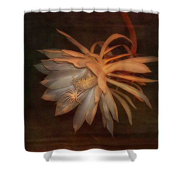 Return Of The Night Bloomer 2 Shower Curtain