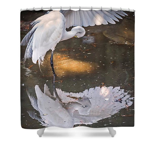 Revealed Close-up Shower Curtain