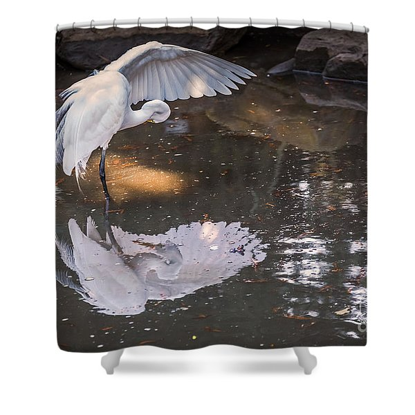 Revealed Landscape Shower Curtain