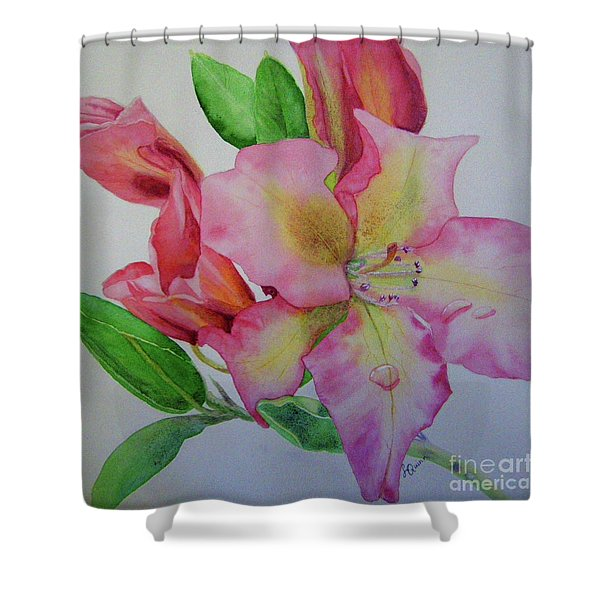 Rhodie With Dew I Shower Curtain