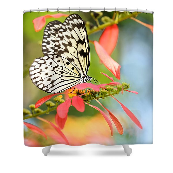 Rice Paper Butterfly In The Garden Shower Curtain