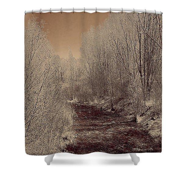 Rio Taos Bosque Iv Shower Curtain