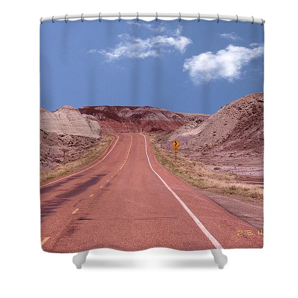 Road Curves Shower Curtain