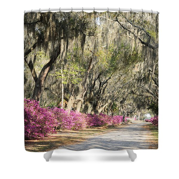 Road With Azaleas And Live Oaks Shower Curtain