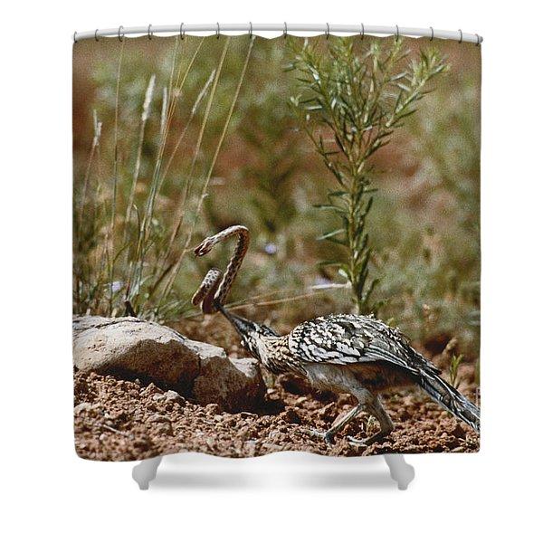 Roadrunner With Snake Shower Curtain