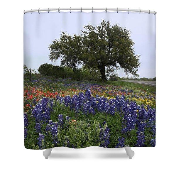 Roadside Splendor Shower Curtain