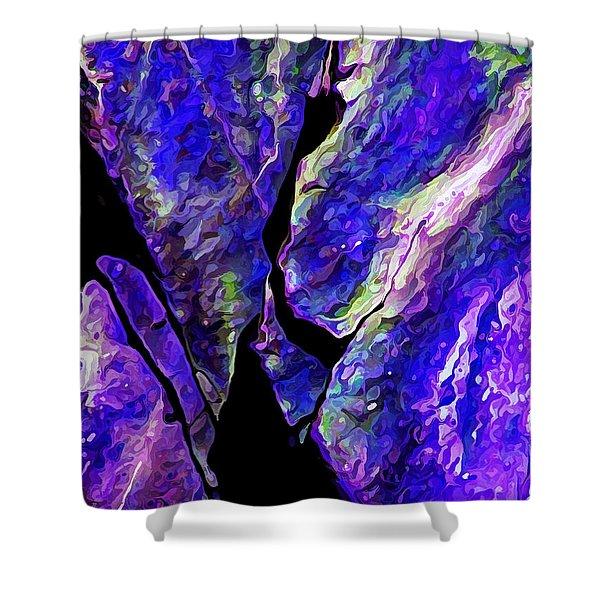 Rock Art 19 Shower Curtain
