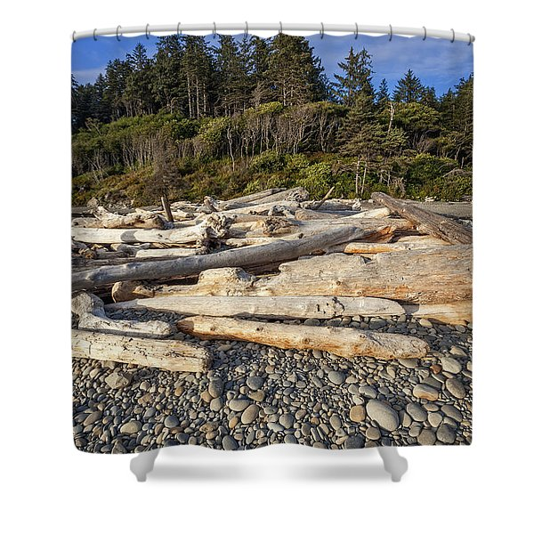 Shower Curtain featuring the photograph Rocky Beach And Driftwood by Bryan Mullennix