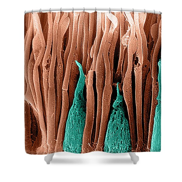 Rods And Cones Sem Shower Curtain