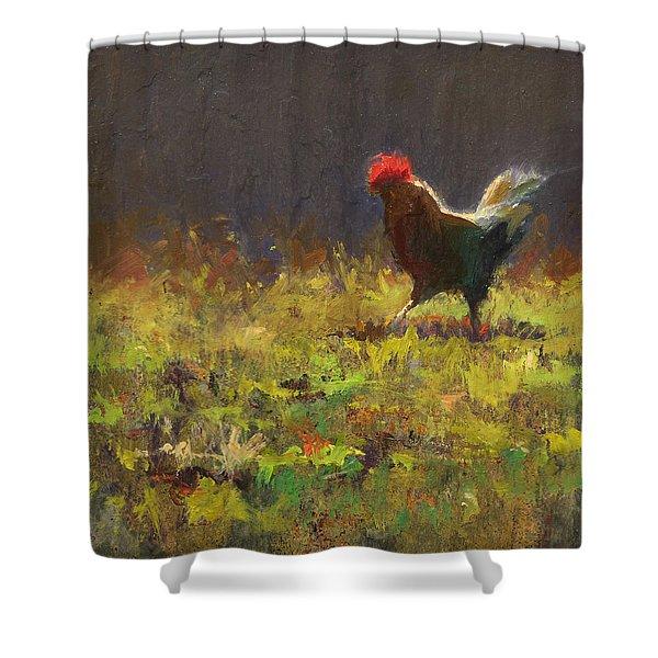 Rooster Strut - Impressionistic Chicken Landscape - Abstract Farm Art - Chicken Art - Farm Decor Shower Curtain