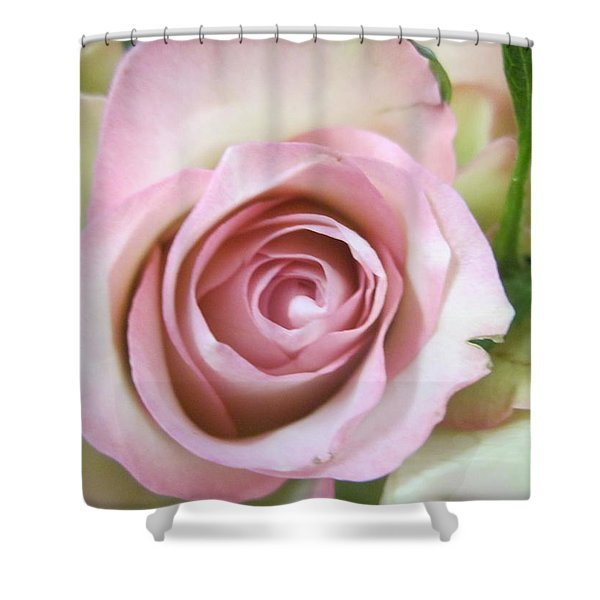 Rose Dream Shower Curtain