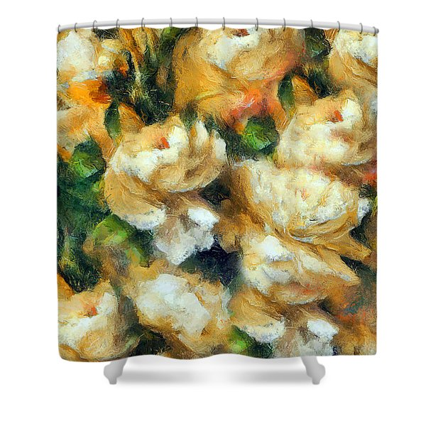 Rose Garden Abstract Expressionism Shower Curtain