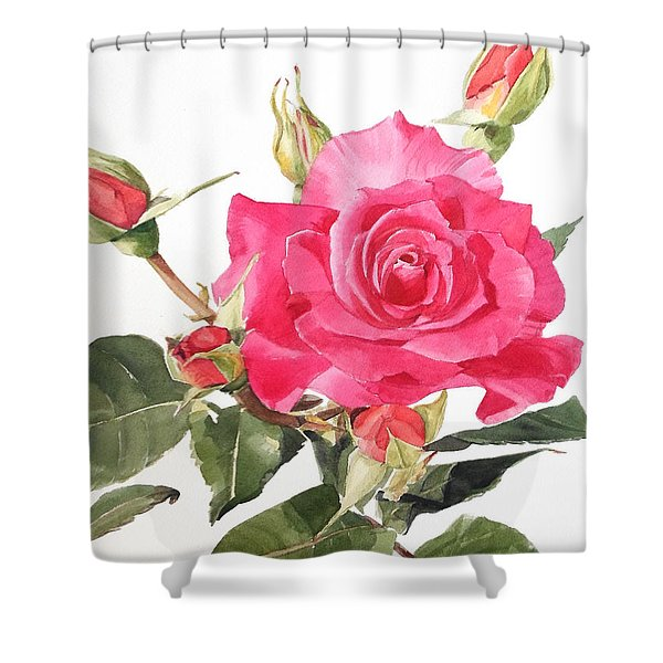 Watercolor Red Rose Margaret Shower Curtain