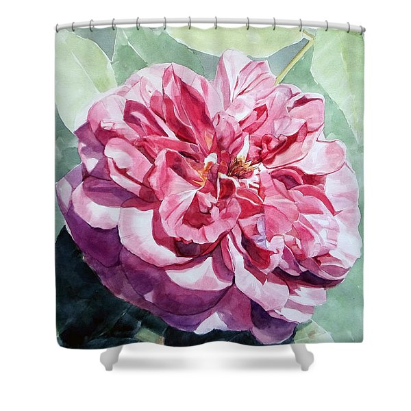 Watercolor Of A Pink Rose In Full Bloom Dedicated To Van Gogh Shower Curtain