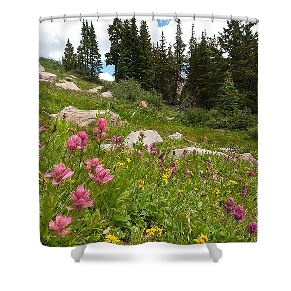 Rosy Paintbrush And Trees Shower Curtain