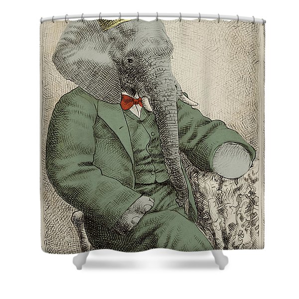 Royal Portrait Shower Curtain