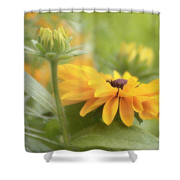 Rudbeckia Flower Shower Curtain