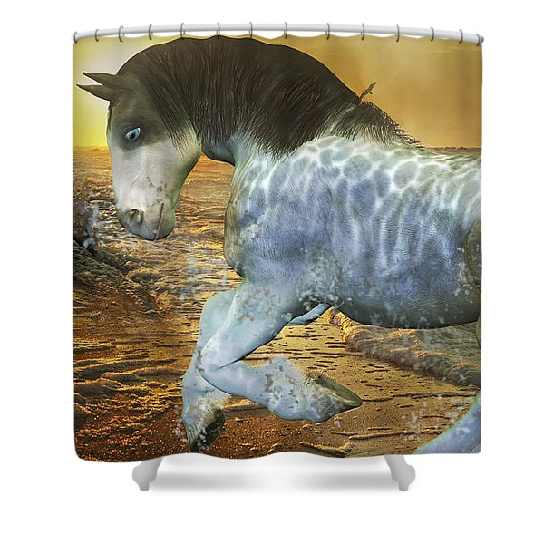 Run With Me Sunrise Shower Curtain