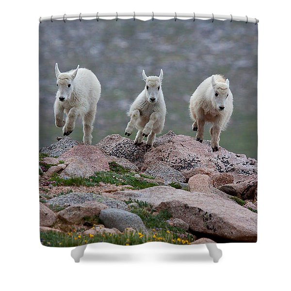 Running Scared Shower Curtain