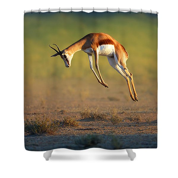 Running Springbok Jumping High Shower Curtain