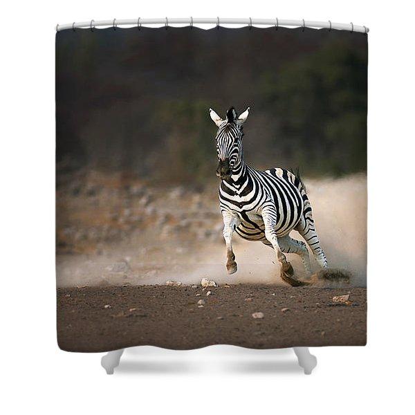Running Zebra Shower Curtain