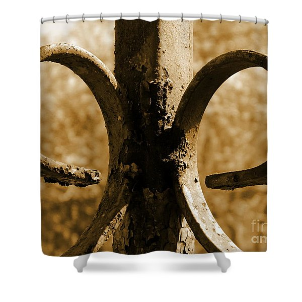 Rusty Memories Shower Curtain