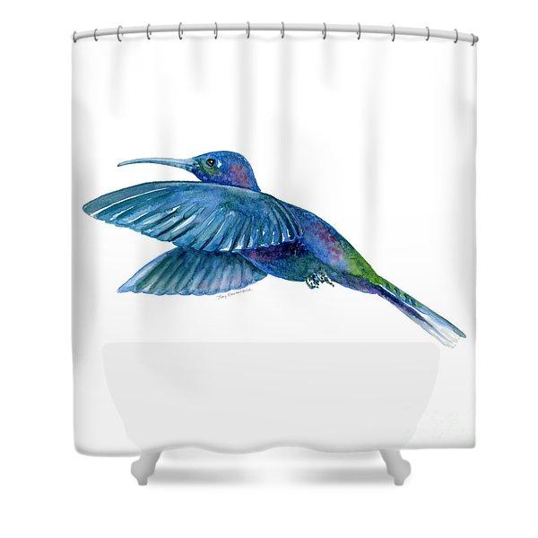 Sabrewing Hummingbird Shower Curtain