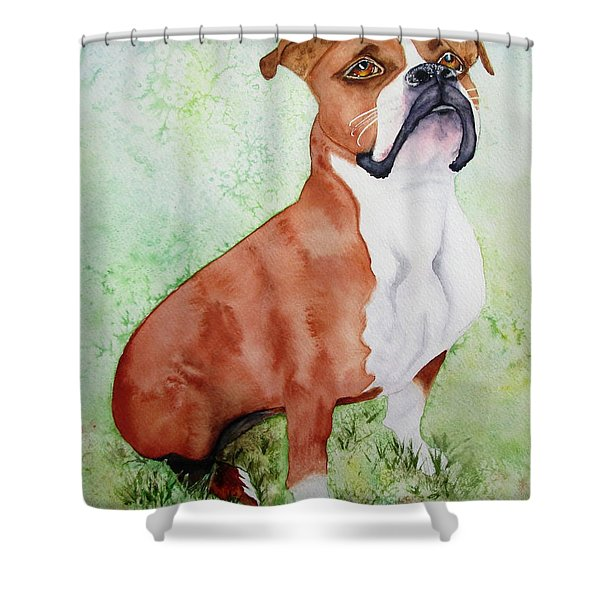 Shower Curtain featuring the painting Sadie by Diane DeSavoy