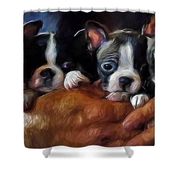 Safe In The Arms Of Love - Puppy Art Shower Curtain