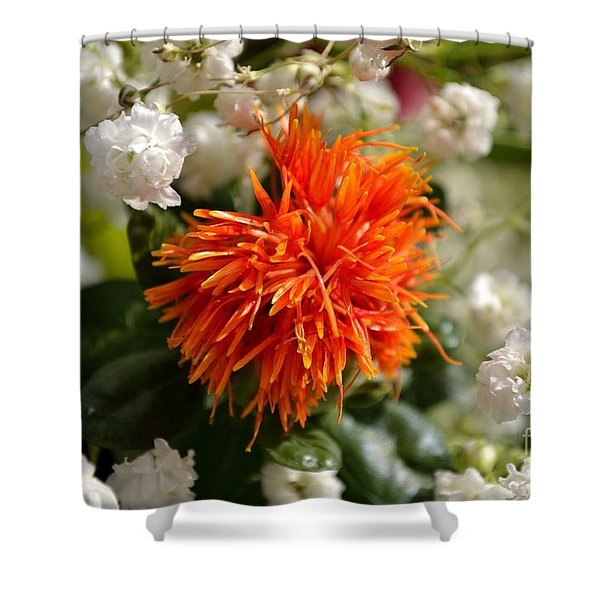 Shower Curtain featuring the photograph Safflower Amongst The Gypsophilia by Scott Lyons