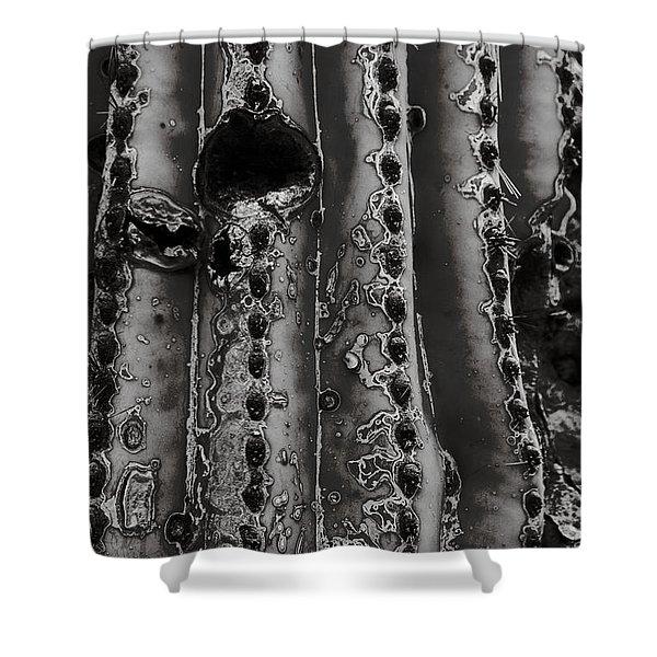 Saguaro Cactus Black And White 1 Shower Curtain