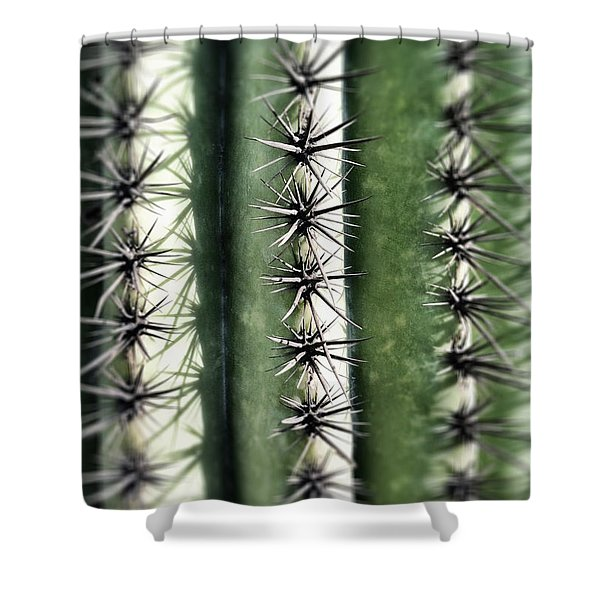 Shower Curtain featuring the photograph Saguaro Catus Needles by Bryan Mullennix