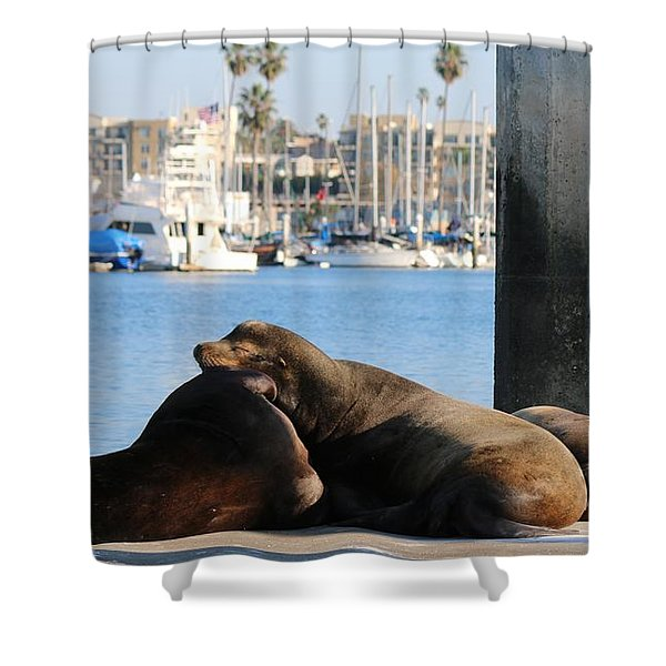 Sailing Dreams  Shower Curtain