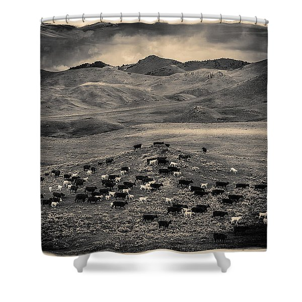 Salt And Pepper Distressed Shower Curtain
