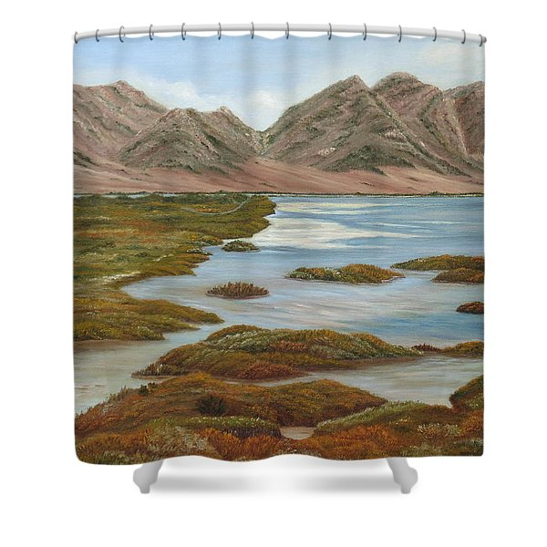 Salt Marsh Shower Curtain