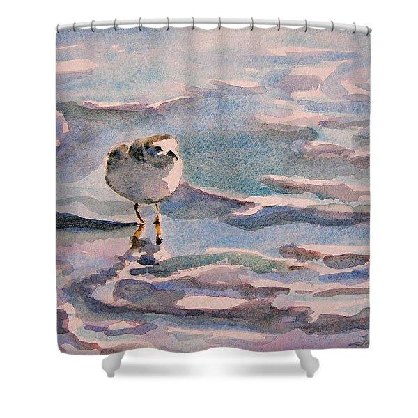 Sandpiper And Seafoam 3-8-15 Shower Curtain