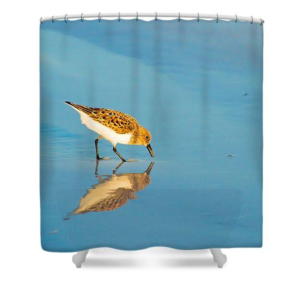 Sandpiper Mirror Shower Curtain