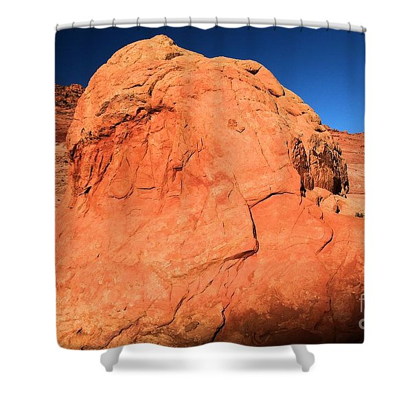 Sandstone Snoopy Shower Curtain