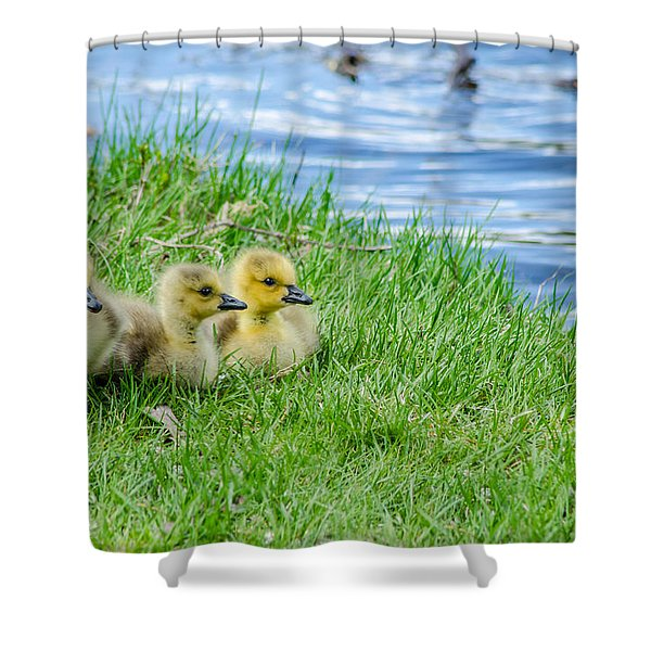 Staying Together Shower Curtain