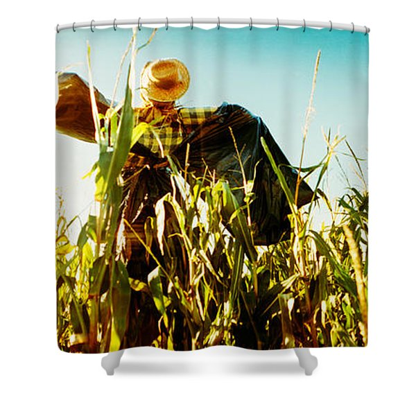 Scarecrow In A Corn Field, Queens Shower Curtain