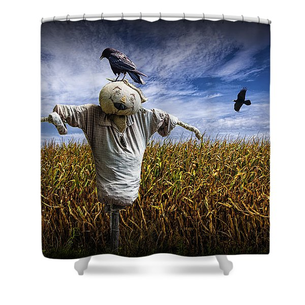 Scarecrow With Black Crows Over A Cornfield Shower Curtain
