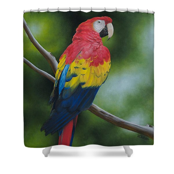Scarlet Macaw Shower Curtain