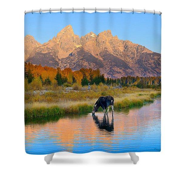 Schwabacher Morning Light  Shower Curtain