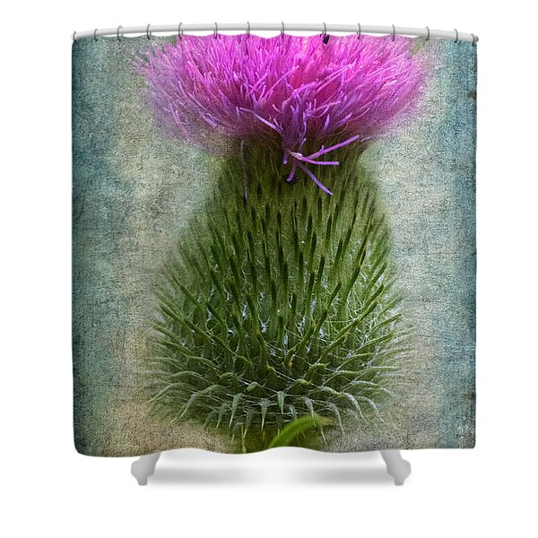 Scotch Thistle Shower Curtain