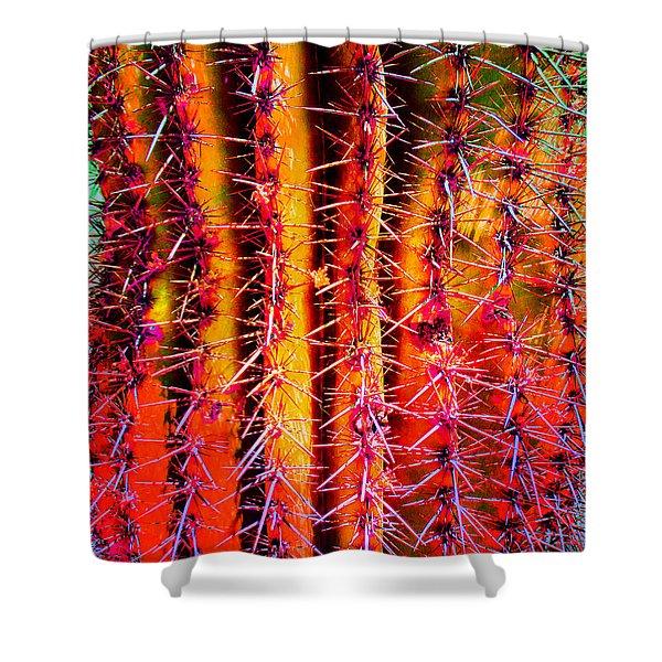 Scottsdale Saguaro Shower Curtain