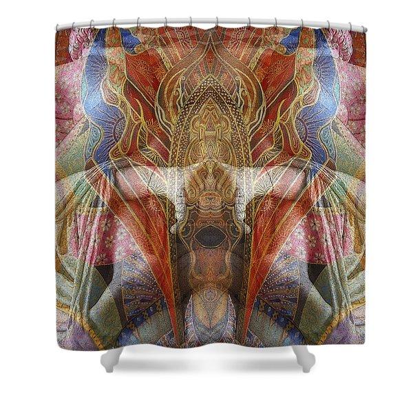 Sculpture 2 Shower Curtain