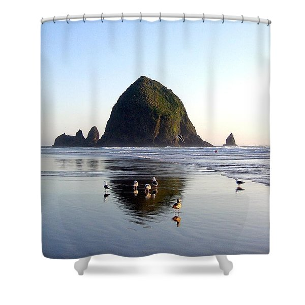 Seagulls And A Surfer Shower Curtain
