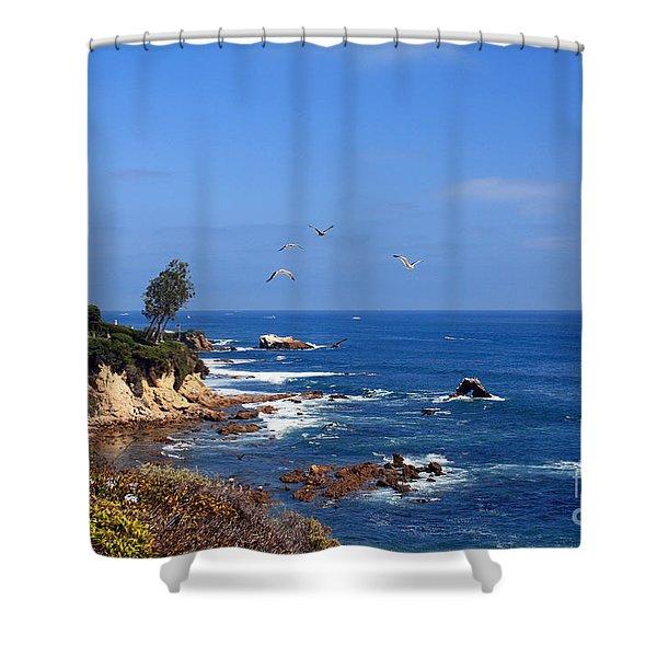 Seagulls At Laguna Beach Shower Curtain