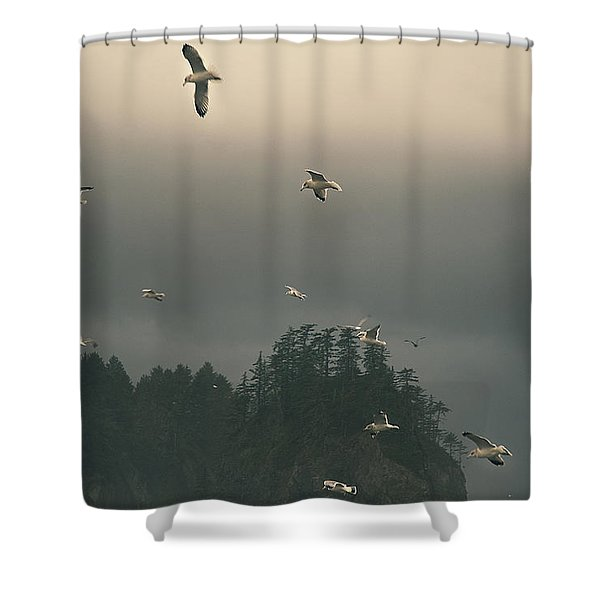 Seagulls In A Storm Shower Curtain